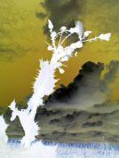 Viva le vent 2011